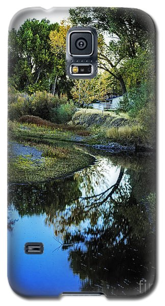 Autumn Reflection Galaxy S5 Case by Nancy Marie Ricketts