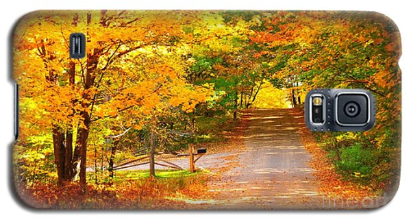 Autumn Road Home Galaxy S5 Case by Terri Gostola