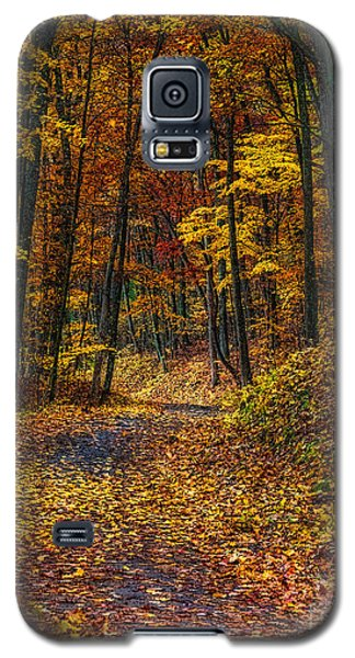 Autumn Roadway Reclamation Galaxy S5 Case