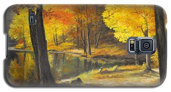Autumn Silence  Galaxy S5 Case by Sorin Apostolescu