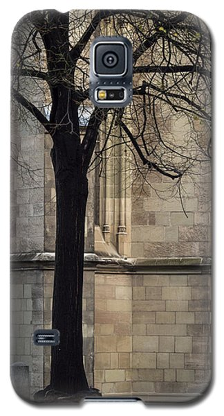 Autumn Silhouette Galaxy S5 Case by Muhie Kanawati