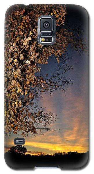 Autumn Sky And Leaves 2 Galaxy S5 Case