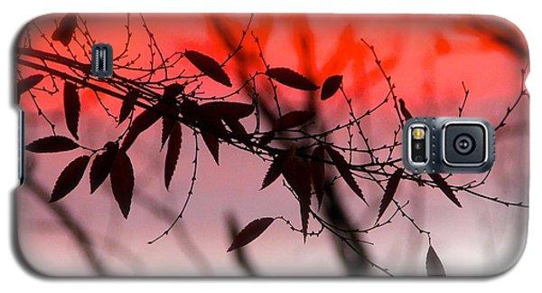 Autumn Song Galaxy S5 Case