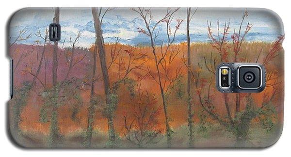 Autumn Splendor Galaxy S5 Case by Diane Pape