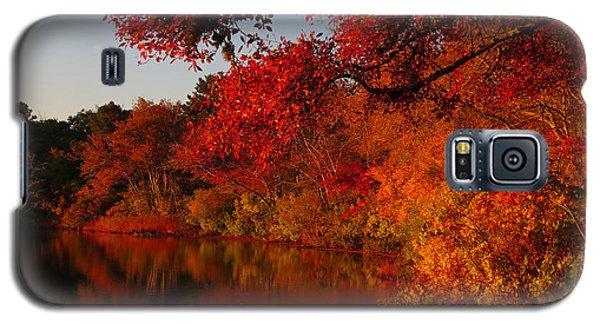 Galaxy S5 Case featuring the photograph Autumn Splendor  by Dianne Cowen