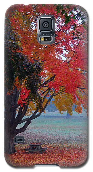 Autumn Splendor Galaxy S5 Case by Lisa Phillips
