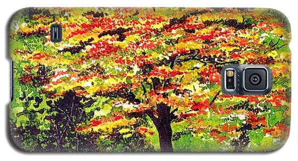 Autumn Splendor Galaxy S5 Case by Patricia Griffin Brett