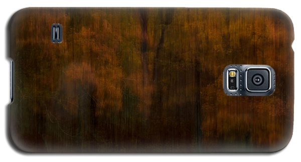 Autumn Streak Galaxy S5 Case