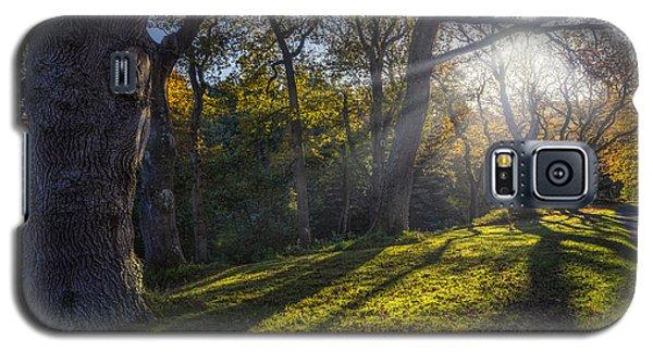Autumn Stroll V2 Galaxy S5 Case