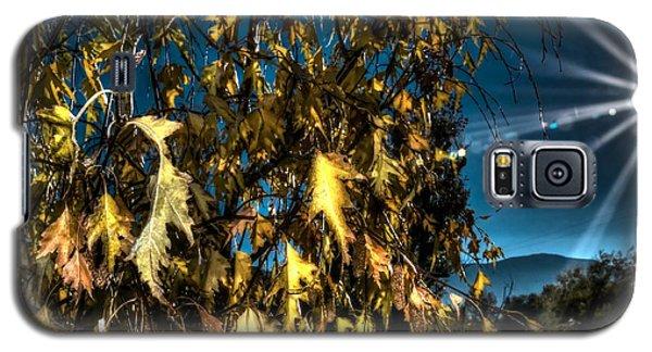 Autumn Sun Galaxy S5 Case by Kevin Bone