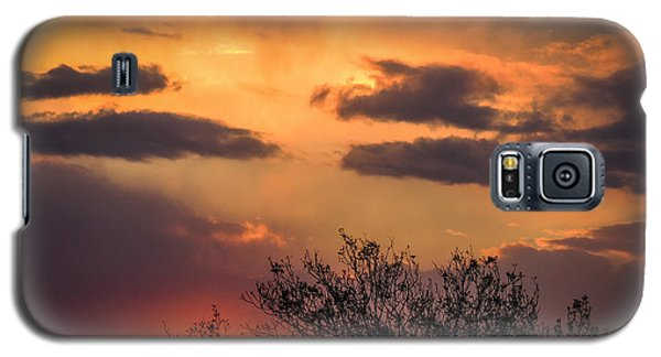 Autumn Sunrise Galaxy S5 Case