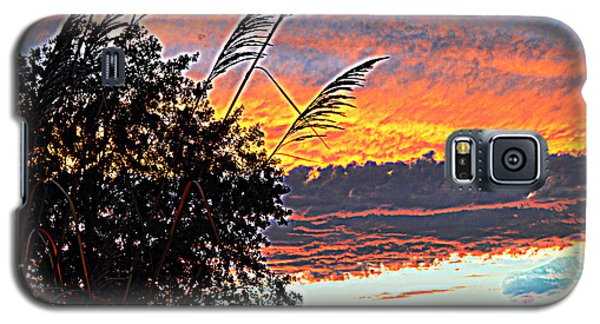 Autumn Sunset Galaxy S5 Case by Luther Fine Art
