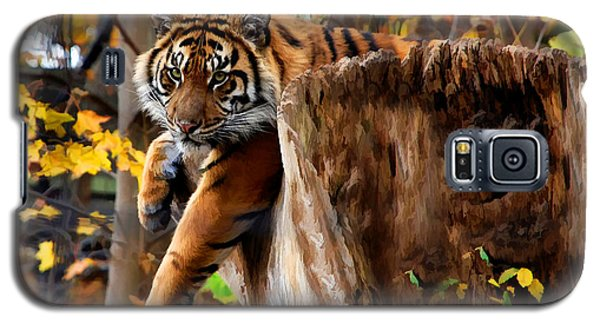 Galaxy S5 Case featuring the photograph Autumn Tiger by Elaine Manley
