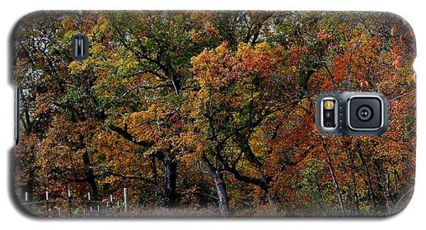 Autumn Trail 2 Galaxy S5 Case