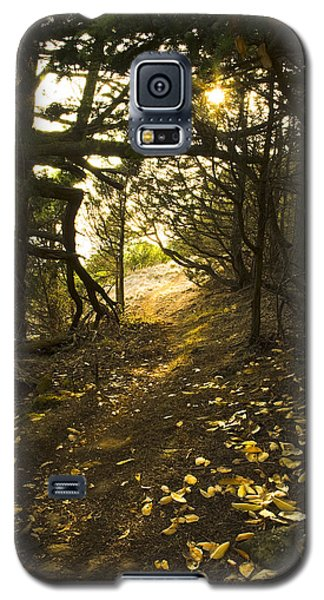 Galaxy S5 Case featuring the photograph Autumn Trail In Woods by Yulia Kazansky