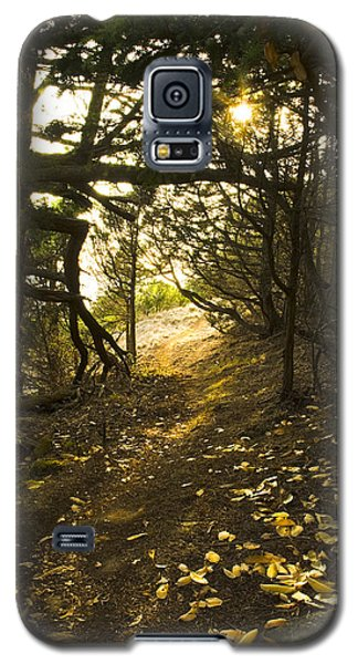 Autumn Trail In Woods Galaxy S5 Case