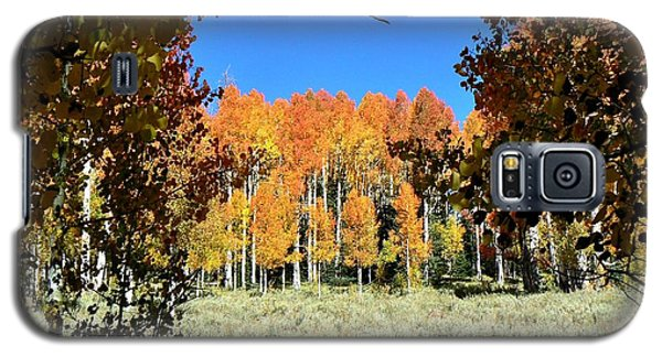 Galaxy S5 Case featuring the photograph Autumn Trees Dixie National Forest Utah by Deborah Moen