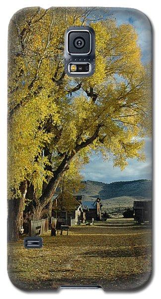 Autumn Trees In Nevada City Montana Galaxy S5 Case