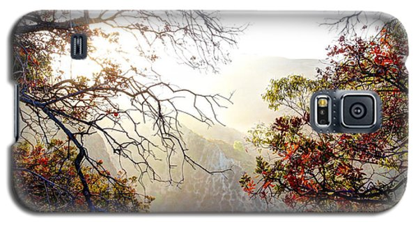 Galaxy S5 Case featuring the photograph Autumn Trees by Kevin Ashley