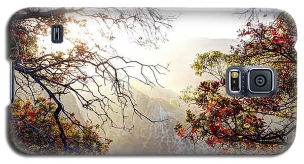 Autumn Trees Galaxy S5 Case by Kevin Ashley