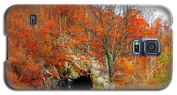 Autumn Tunnel Galaxy S5 Case