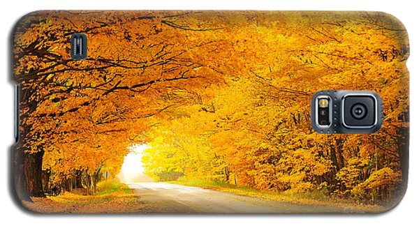 Autumn Tunnel Of Gold 8 Galaxy S5 Case