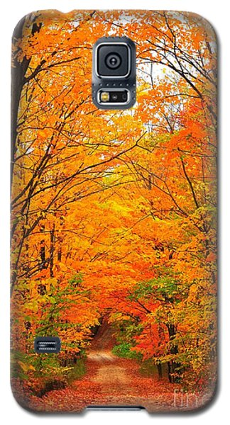 Galaxy S5 Case featuring the photograph Autumn Tunnel Of Trees by Terri Gostola