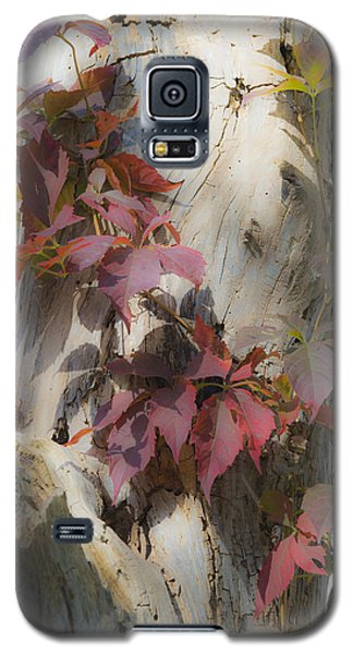 Autumn Veil Galaxy S5 Case