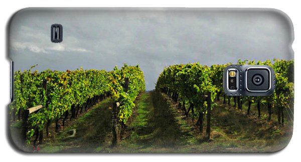 Galaxy S5 Case featuring the photograph Autumn Vineyard by Mindy Bench
