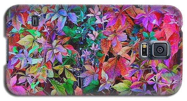 Autumn Virginia Creeper Galaxy S5 Case by Diane Alexander