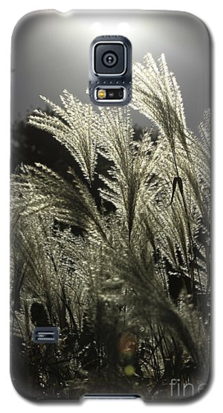 Autumn Whispers Galaxy S5 Case