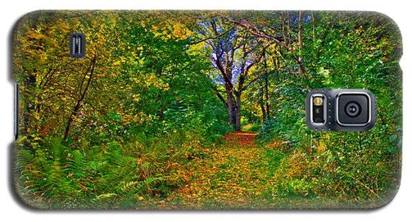 Autumn Woodland Galaxy S5 Case
