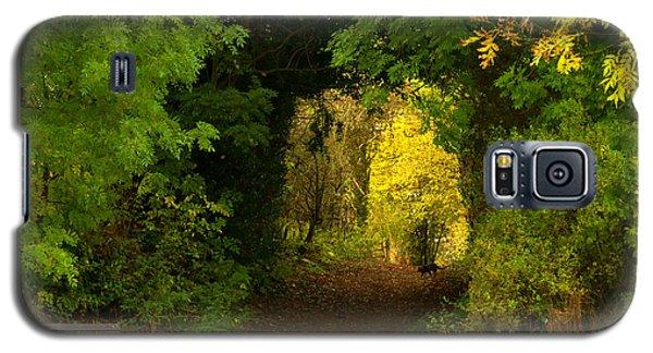 Autumn Woodland Walk Galaxy S5 Case