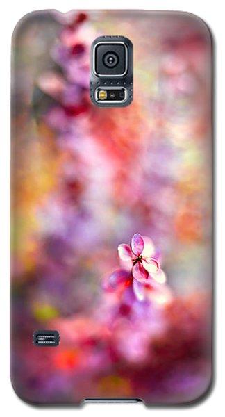 Autumnal Berberis 2 Galaxy S5 Case