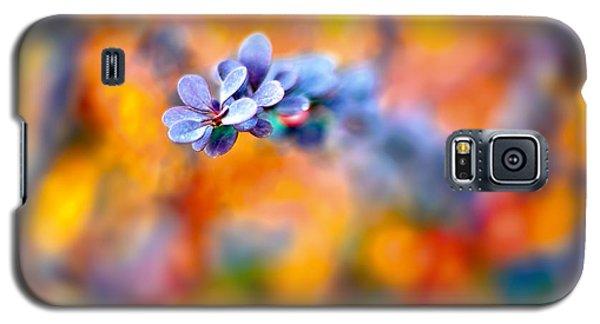 Autumnal Berberis Galaxy S5 Case