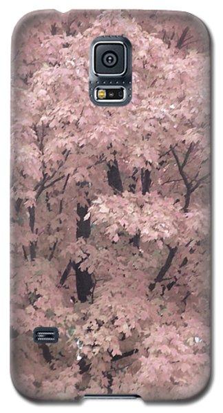 Autumnal Impression Galaxy S5 Case by Tim Good
