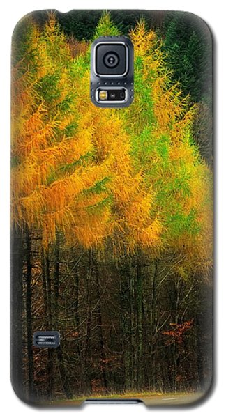 Galaxy S5 Case featuring the photograph Autumnal Road by Maciej Markiewicz