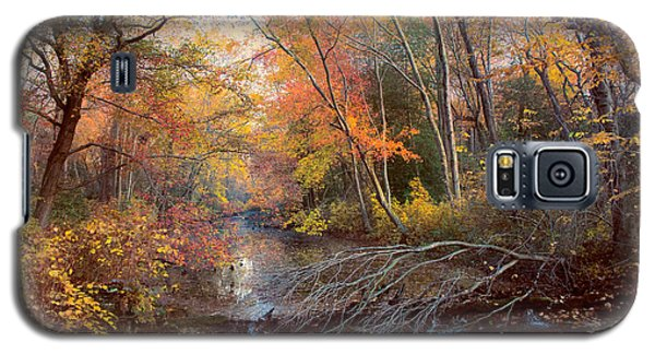 Autumns Afternoon Galaxy S5 Case
