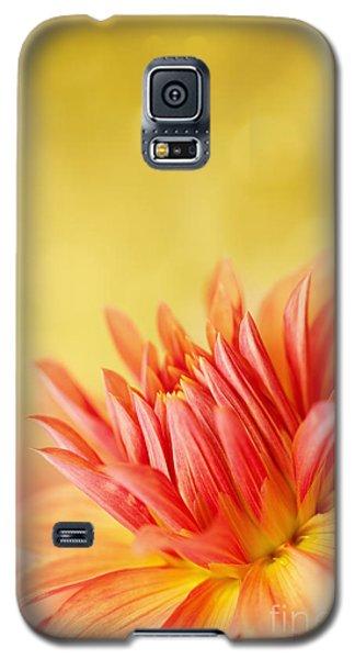Autumns Calling Card Galaxy S5 Case