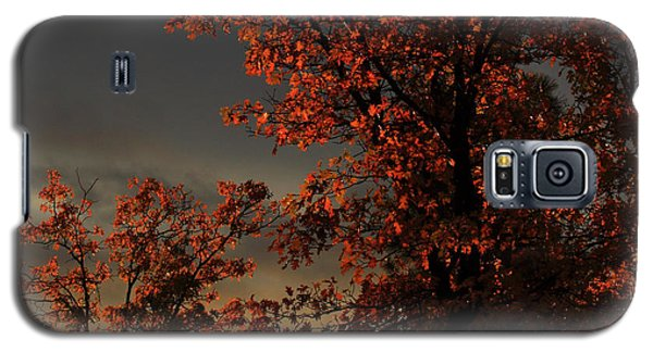 Autumn's First Light Galaxy S5 Case by James Eddy
