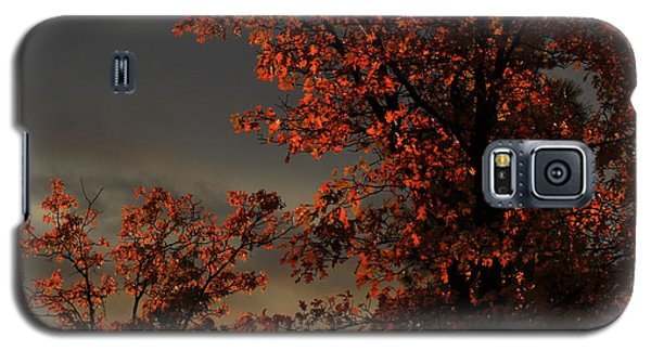 Autumn's First Light Galaxy S5 Case