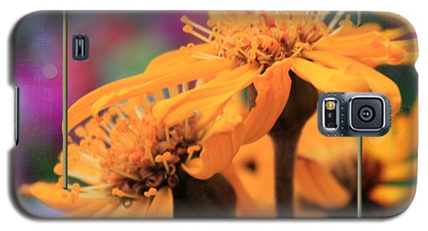 Galaxy S5 Case featuring the photograph Autumn's Glory by Sandra Foster