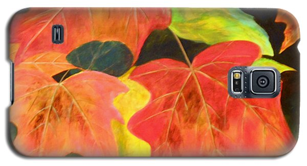 Autumn's Glow  Galaxy S5 Case by Nancy Czejkowski