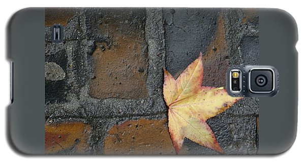 Autumn's Leaf Galaxy S5 Case