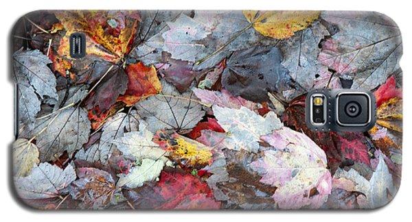 Autumn's Leaves Galaxy S5 Case by Allen Carroll
