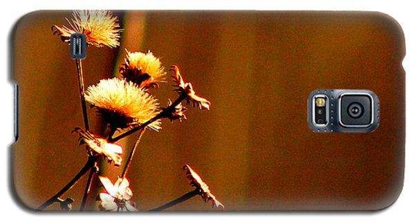Galaxy S5 Case featuring the photograph Autumn's Moment by Bruce Patrick Smith