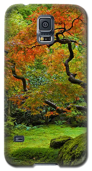 Autumn's Paintbrush Galaxy S5 Case