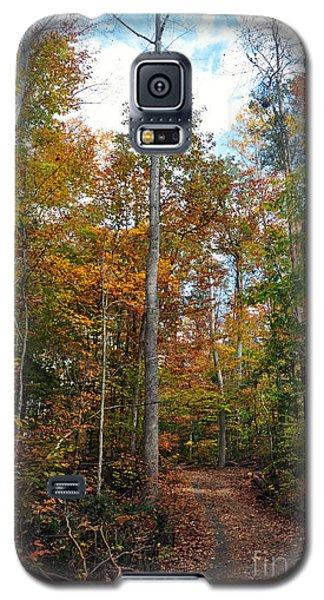 Autumn's Path Galaxy S5 Case by Gina Savage