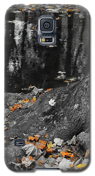 Autumns Reflection Galaxy S5 Case