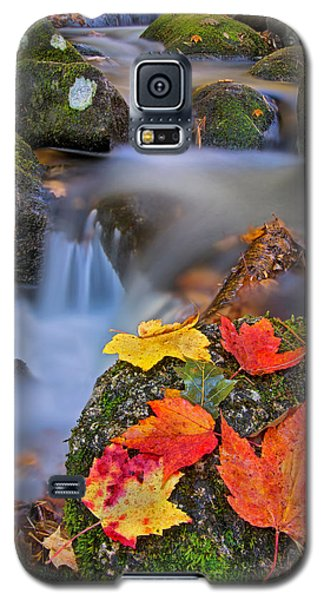 Autumn's Song Galaxy S5 Case